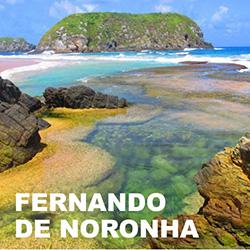 Belezas naturais e fauna marinha são destaques em Fernando de Noronha